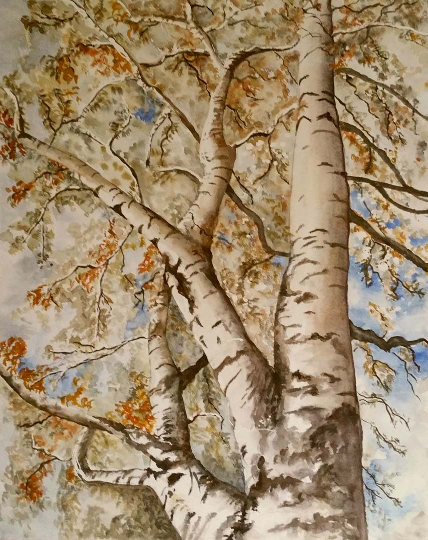 Marcellas Paintings - Marcella Iedema - Amstelveen